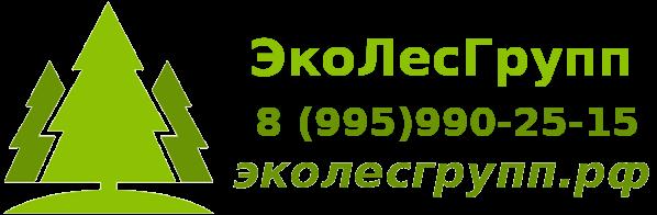 LogoBig1