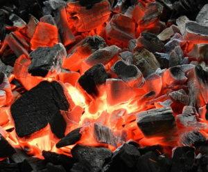 Уголь древесный от компании ЭкоЛес